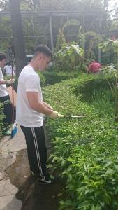 Taller de Jardinería y Viverismo